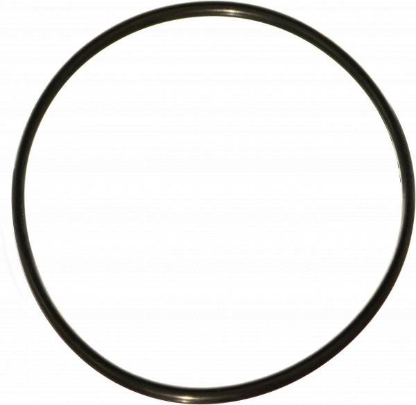 O-Ring für Aqua Bon Wasserfiltergehäuse